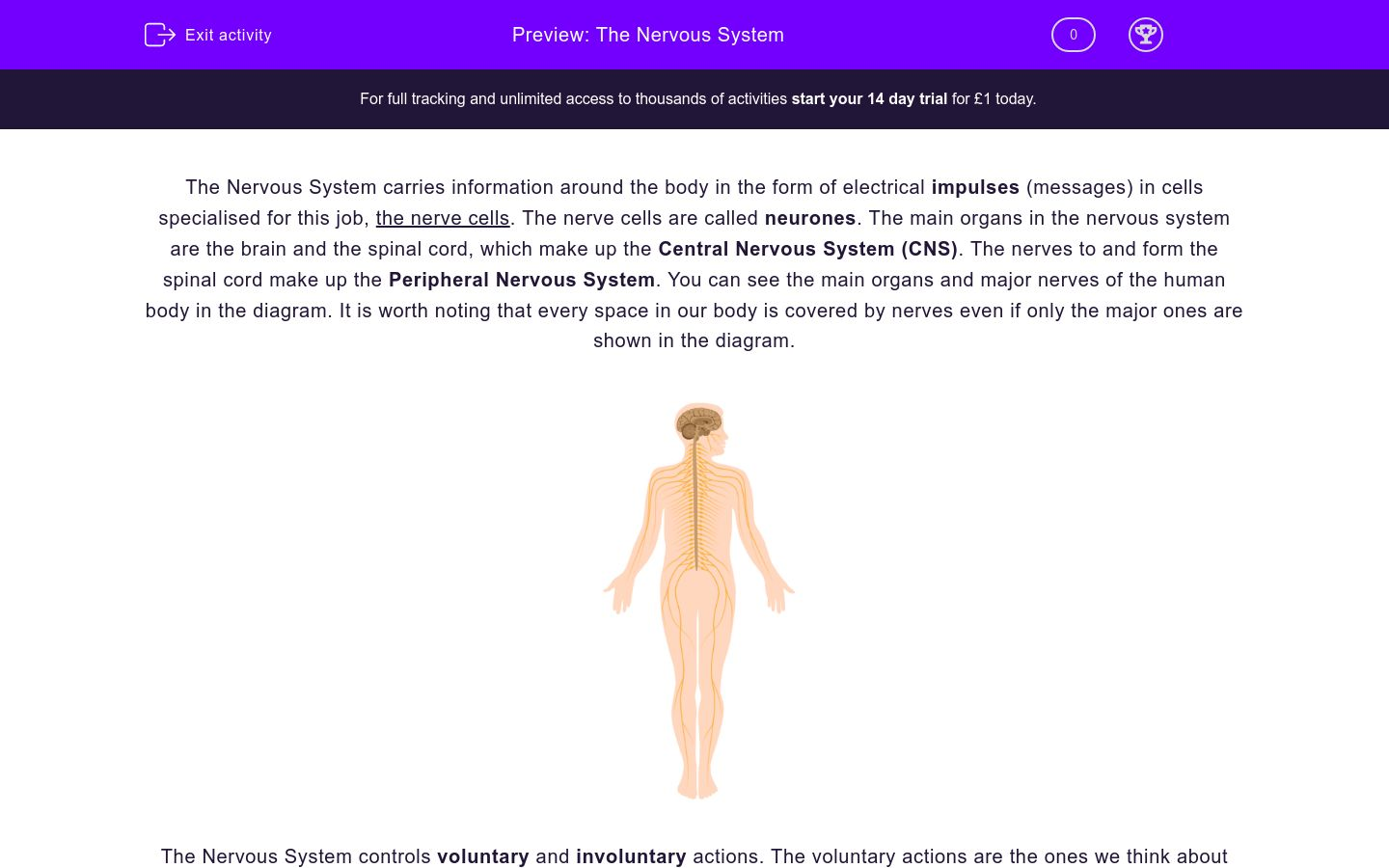 'Understand The Nervous System' worksheet