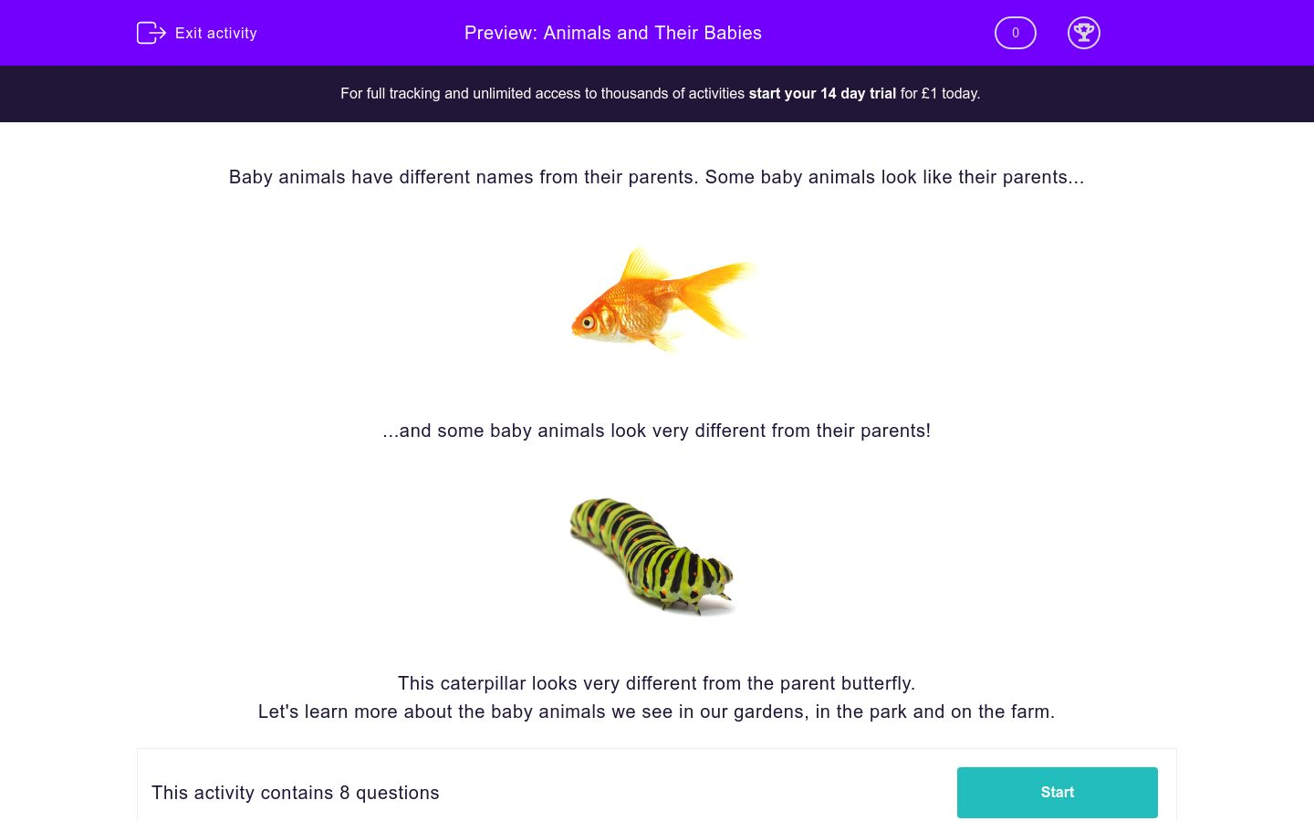 'Animals and Their Babies' worksheet