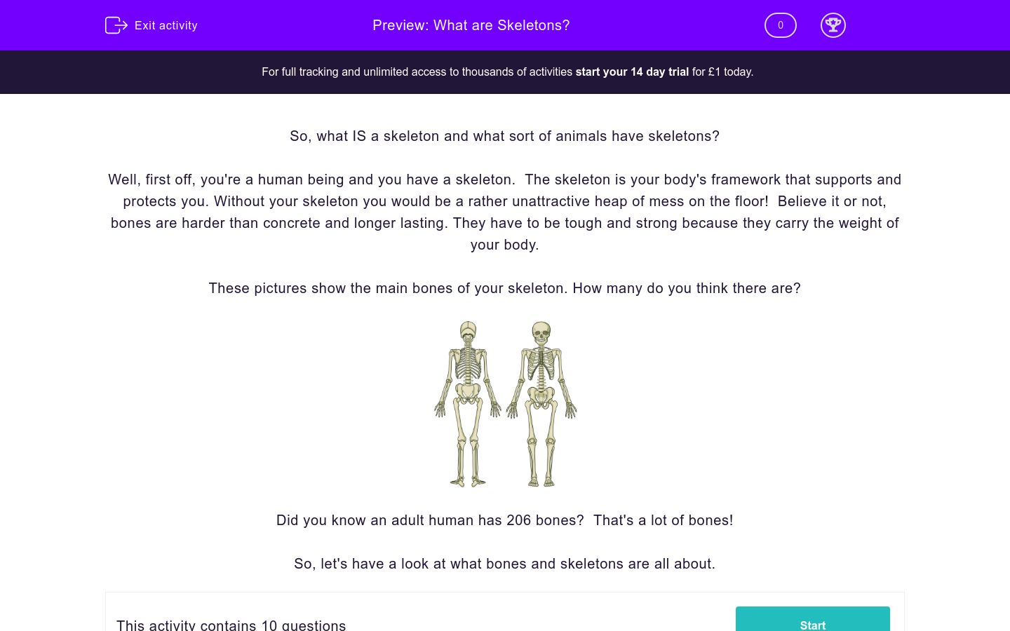'What are Skeletons?' worksheet