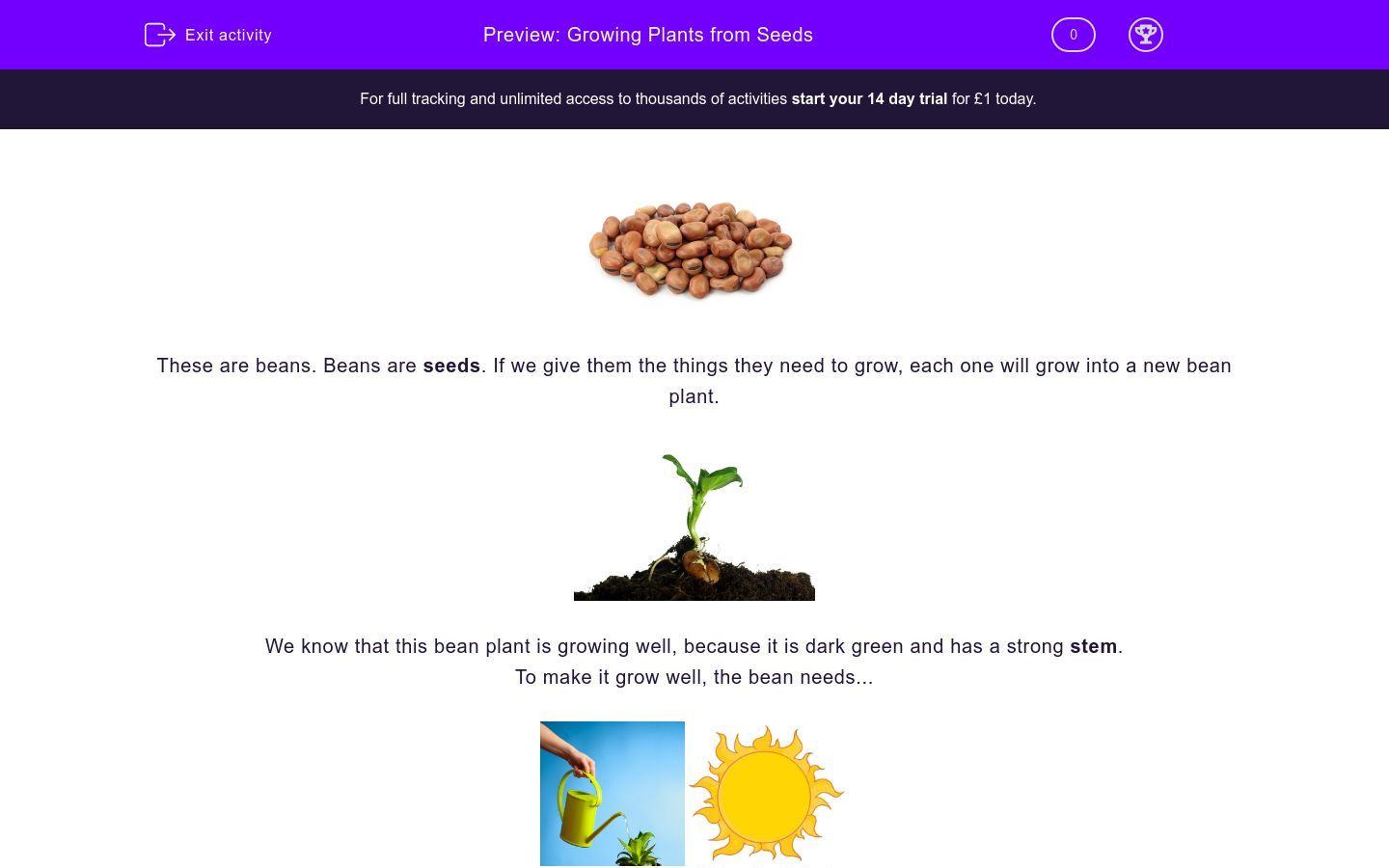 'Growing Plants from Seeds' worksheet