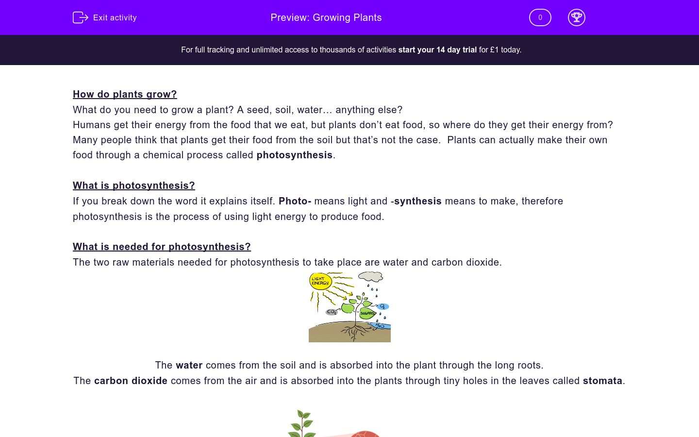 'Growing Plants' worksheet