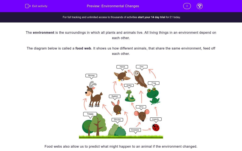 'Environmental Changes' worksheet