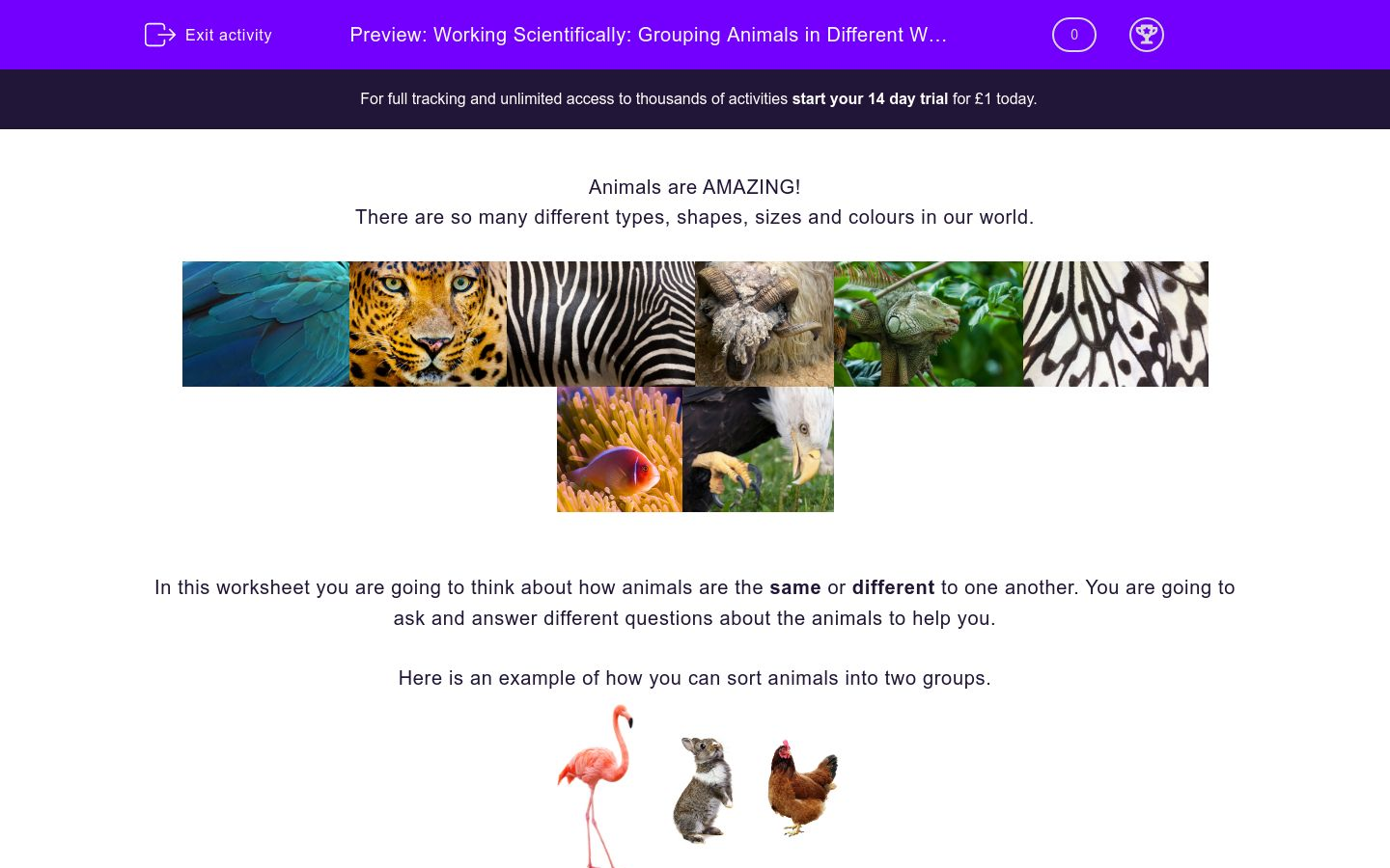 'Working Scientifically: Grouping Animals in Different Ways 3' worksheet