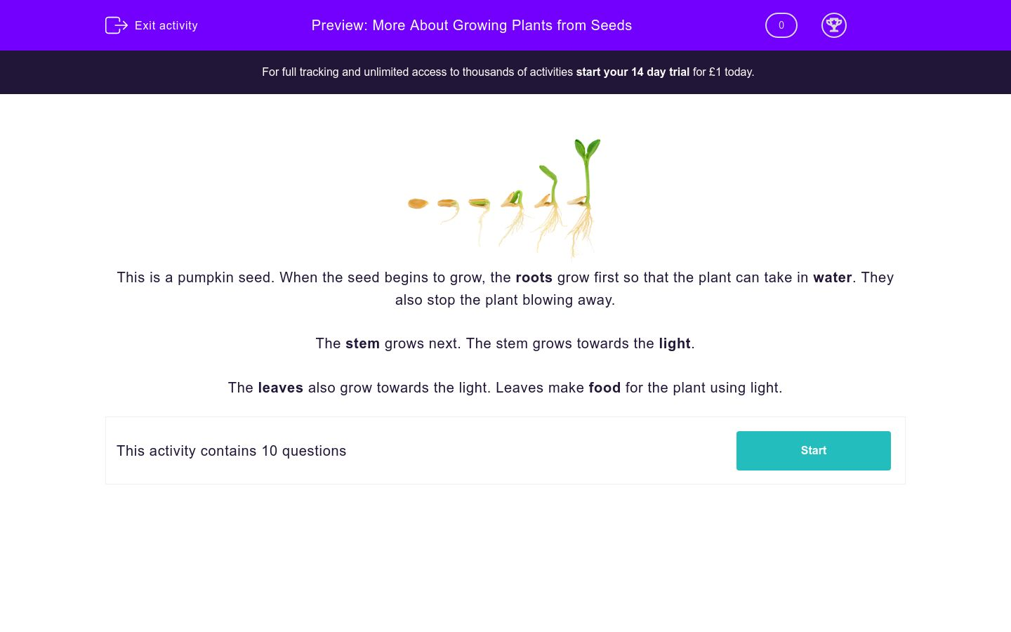 'More About Growing Plants from Seeds' worksheet