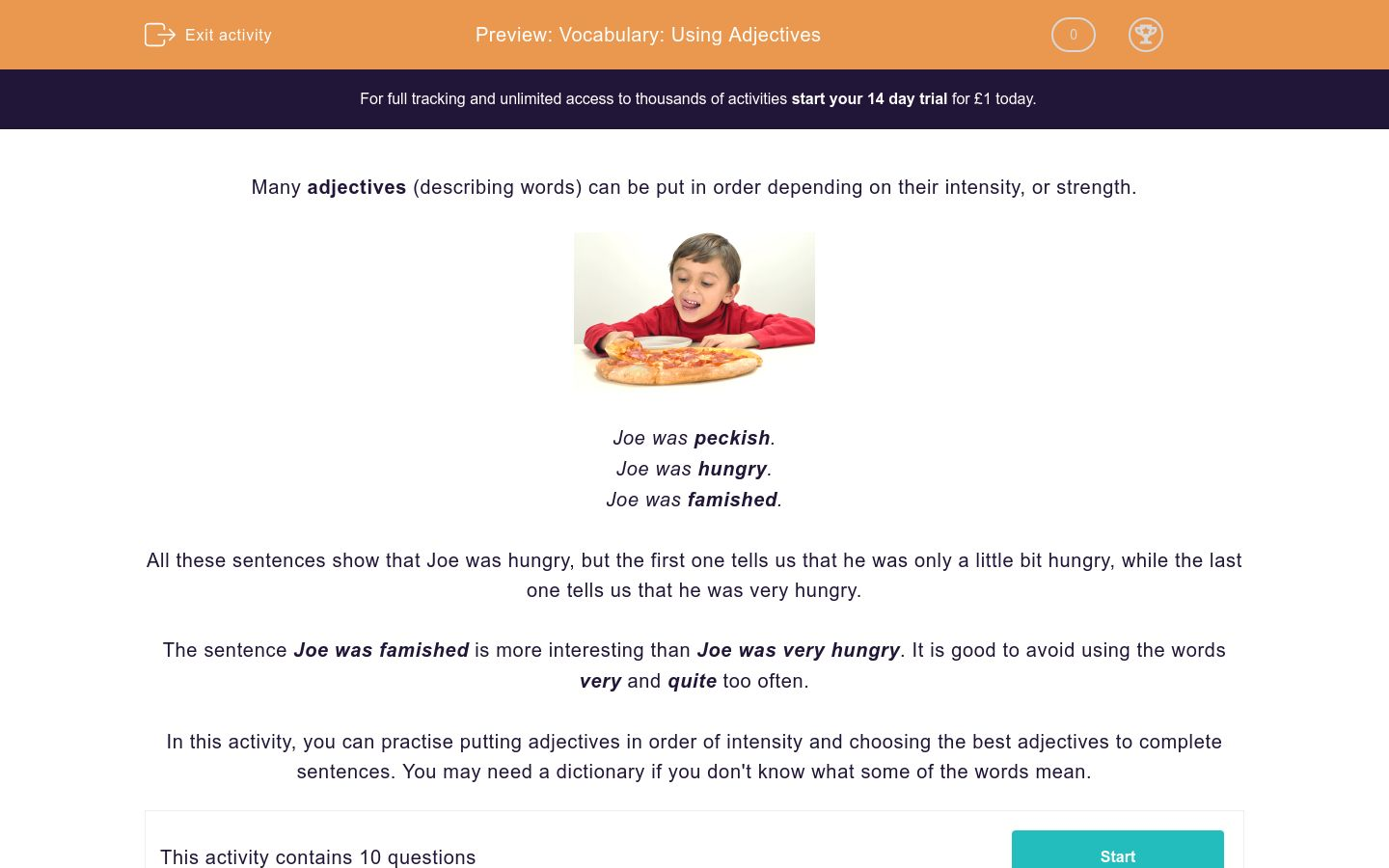'Vocabulary: Using Adjectives' worksheet