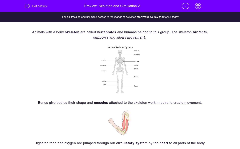 'Skeleton and Circulation 2' worksheet