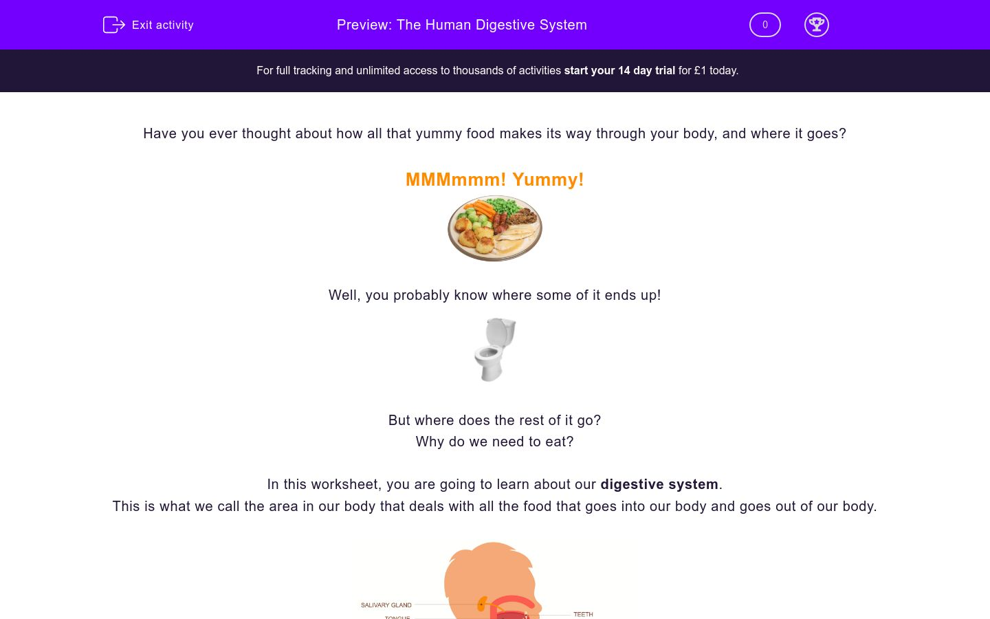 'The Human Digestive System' worksheet