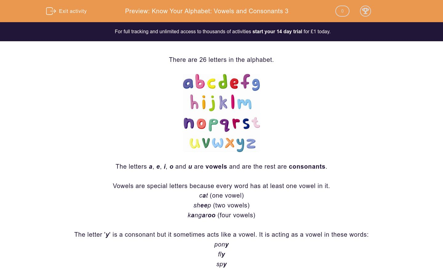 'Know Your Alphabet: Vowels and Consonants 3' worksheet