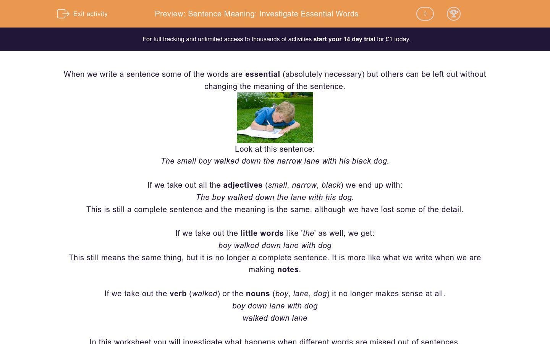 'Sentence Meaning: Investigate Essential Words' worksheet
