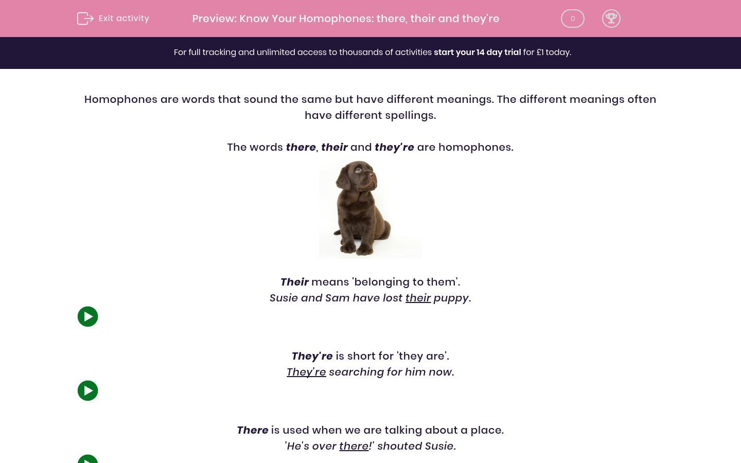 'Know Your Homophones: there, their and they're' worksheet