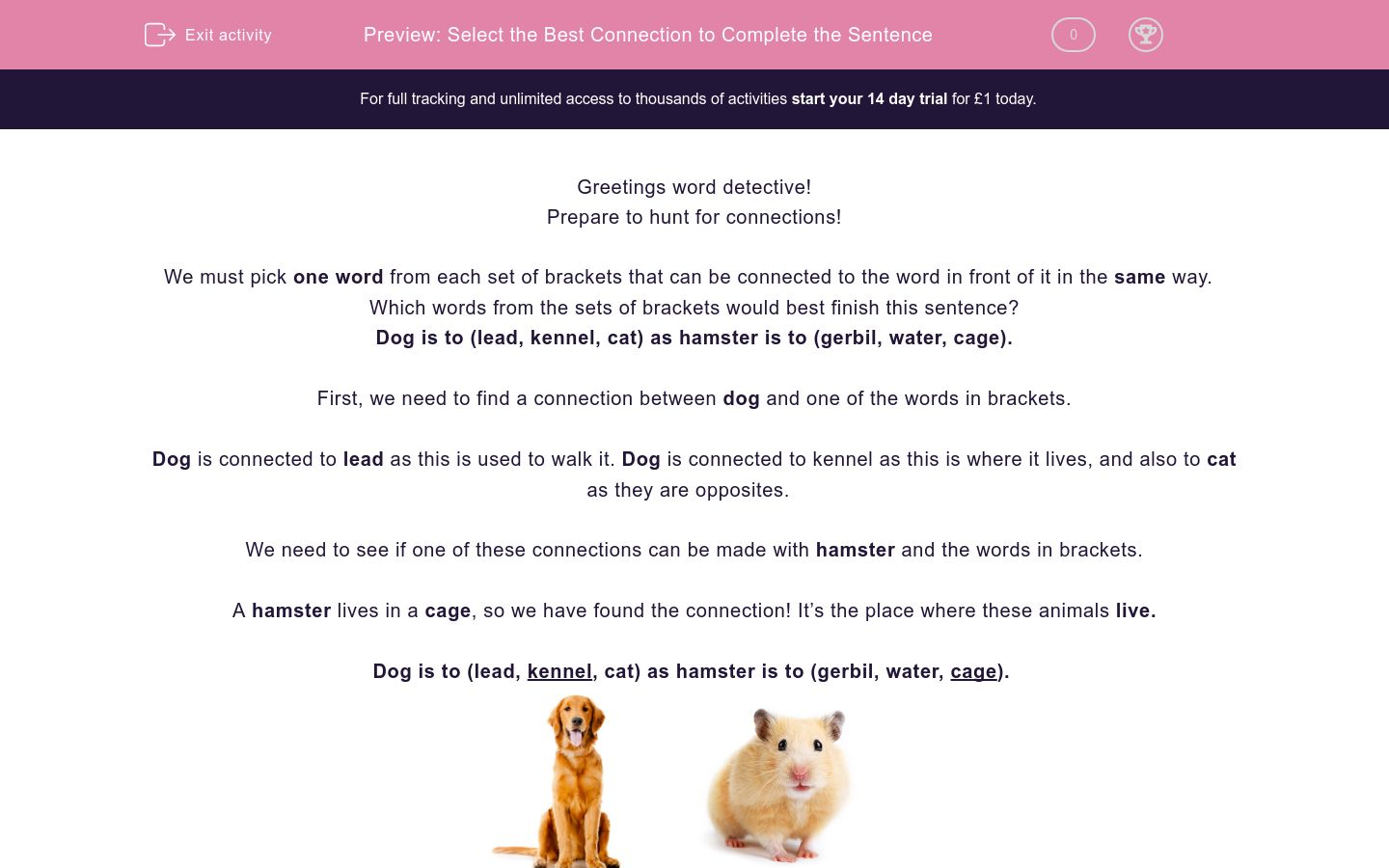 'Select the Best Connection to Complete the Sentence' worksheet