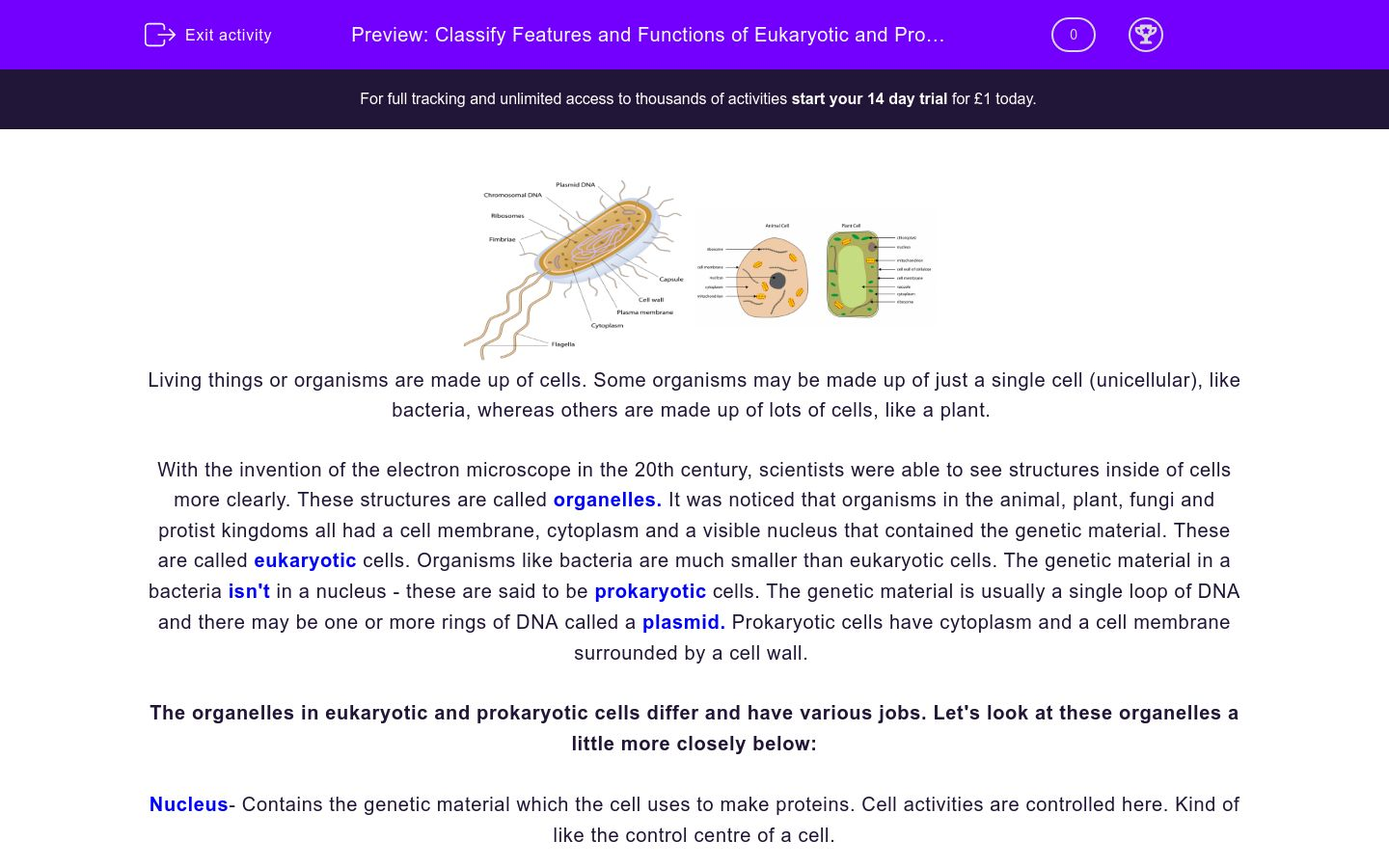 'Classify Features and Functions of Eukaryotic and Prokaryotic Cells' worksheet