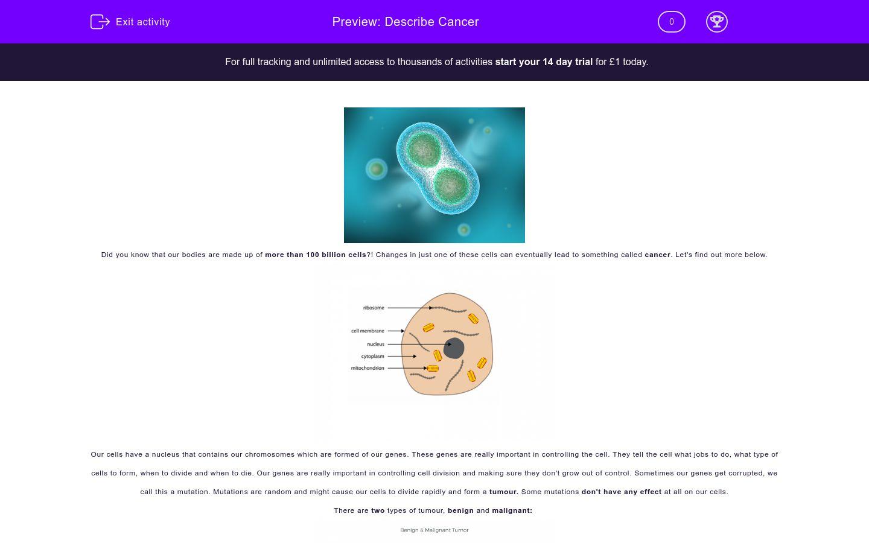 'Describe Cancer' worksheet