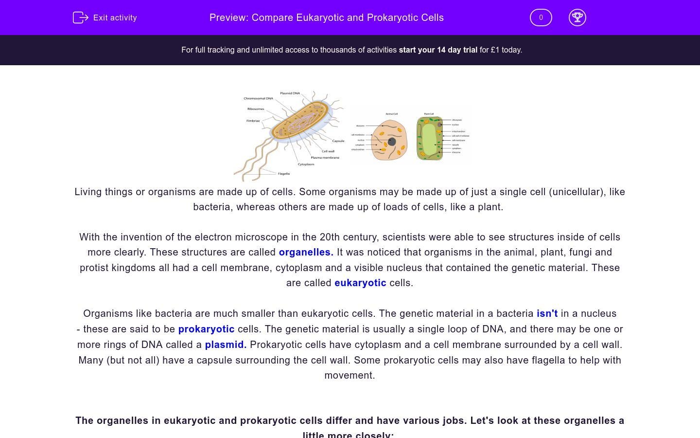 'Compare Eukaryotic and Prokaryotic Cells' worksheet