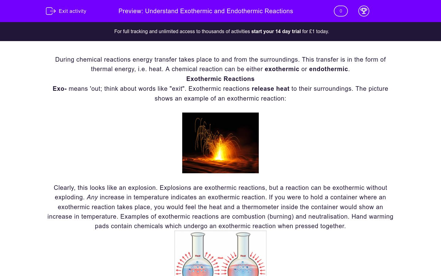 'Understand Exothermic and Endothermic Reactions' worksheet