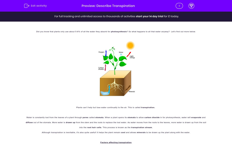'Understand Transpiration' worksheet