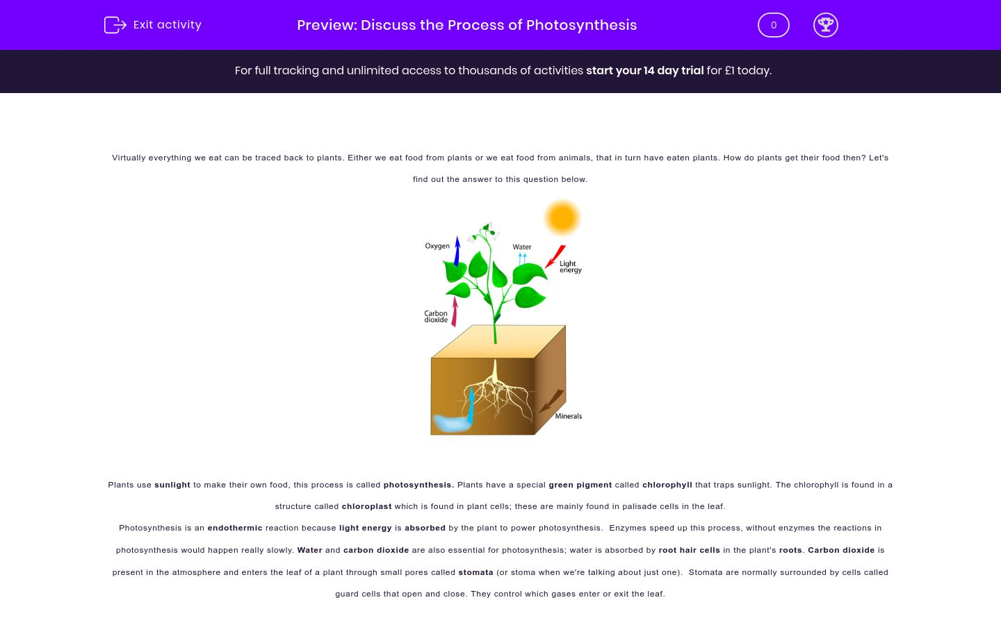 'Discuss the Process of Photosynthesis' worksheet
