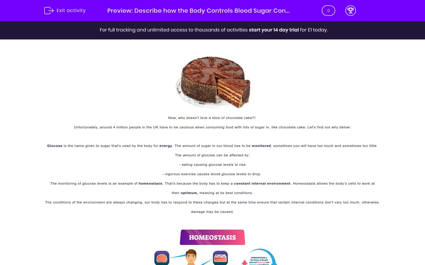 'Describe how the Body Controls Blood Sugar Concentration' worksheet