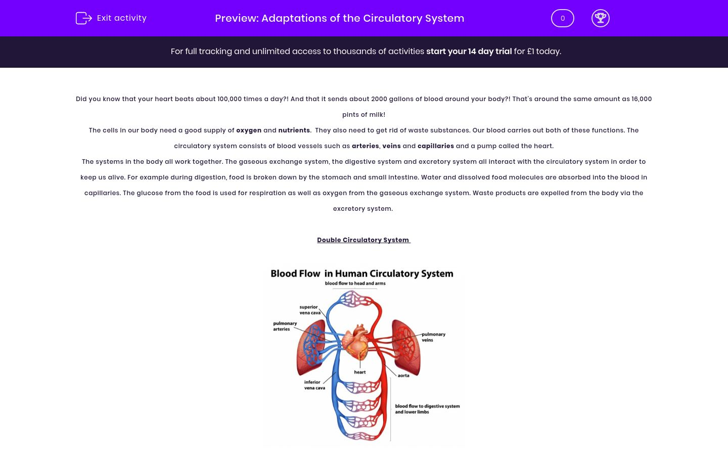 'Adaptations of the Circulatory System' worksheet