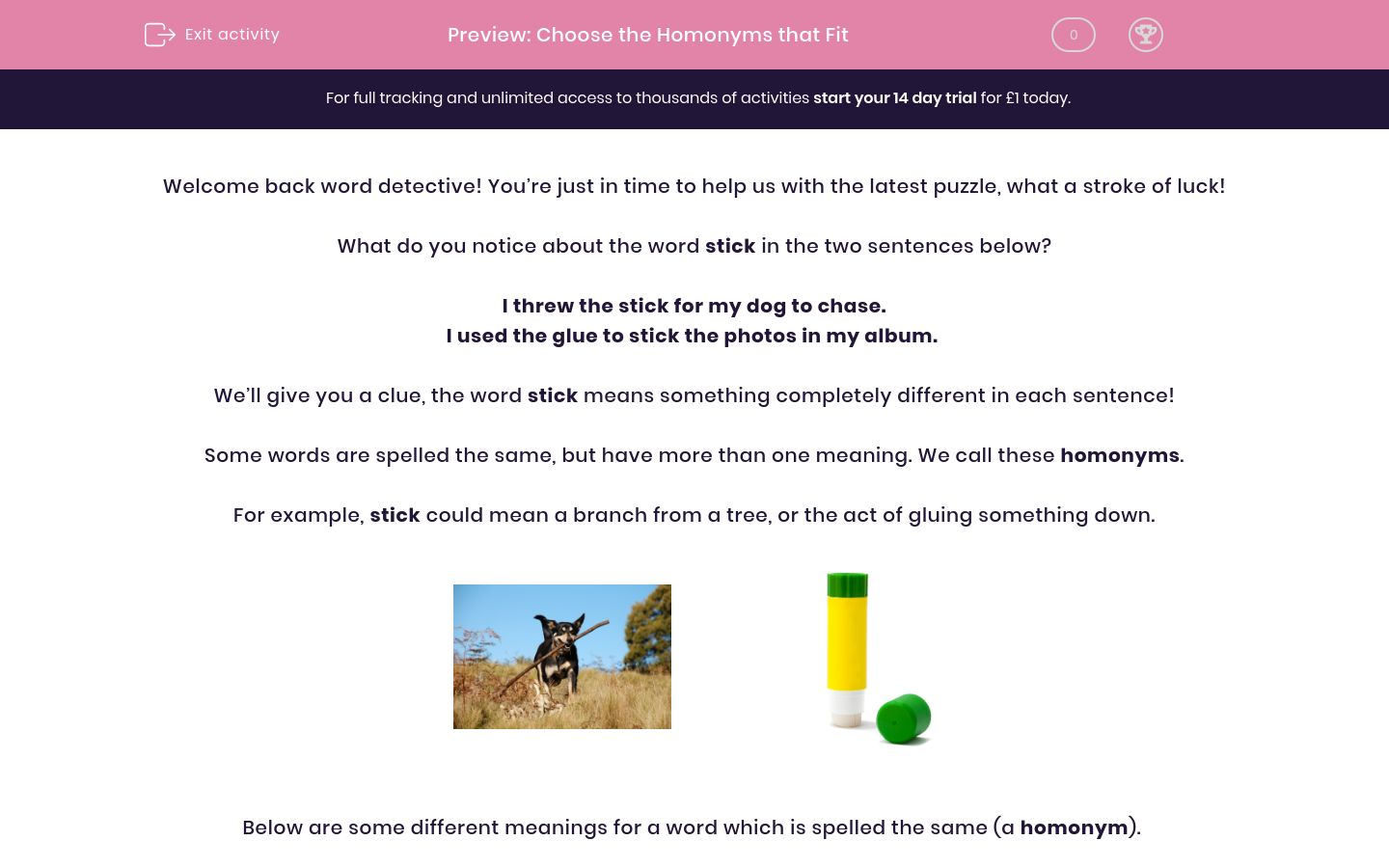 'Choose the Homonyms that Fit' worksheet