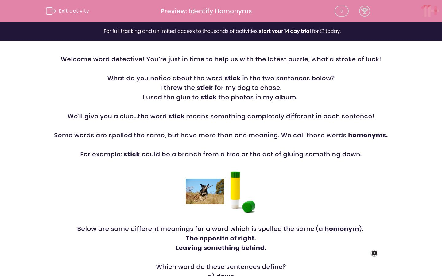 'Identify Homonyms' worksheet