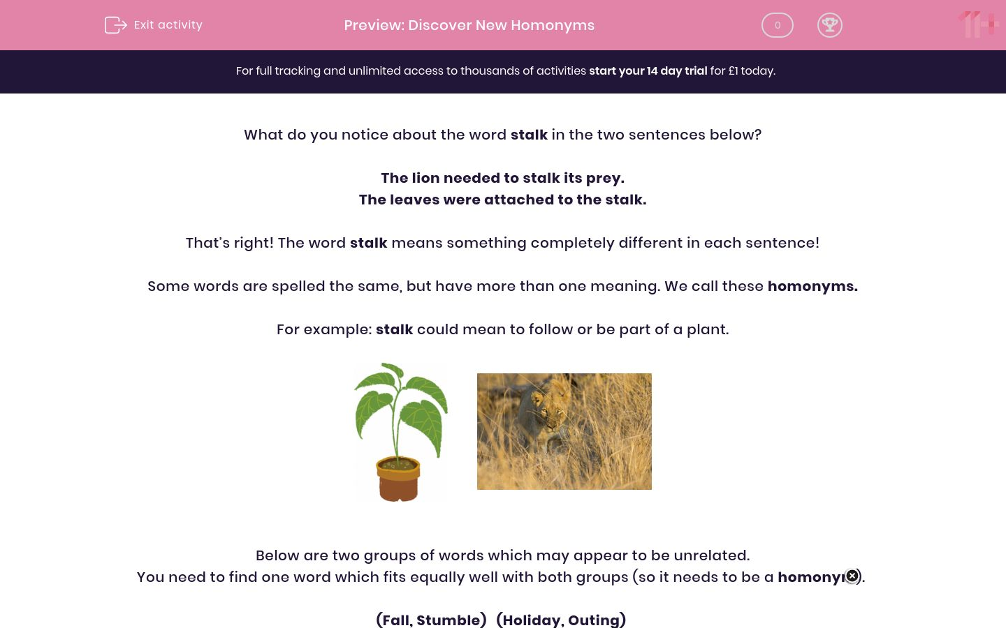 'Discover New Homonyms' worksheet