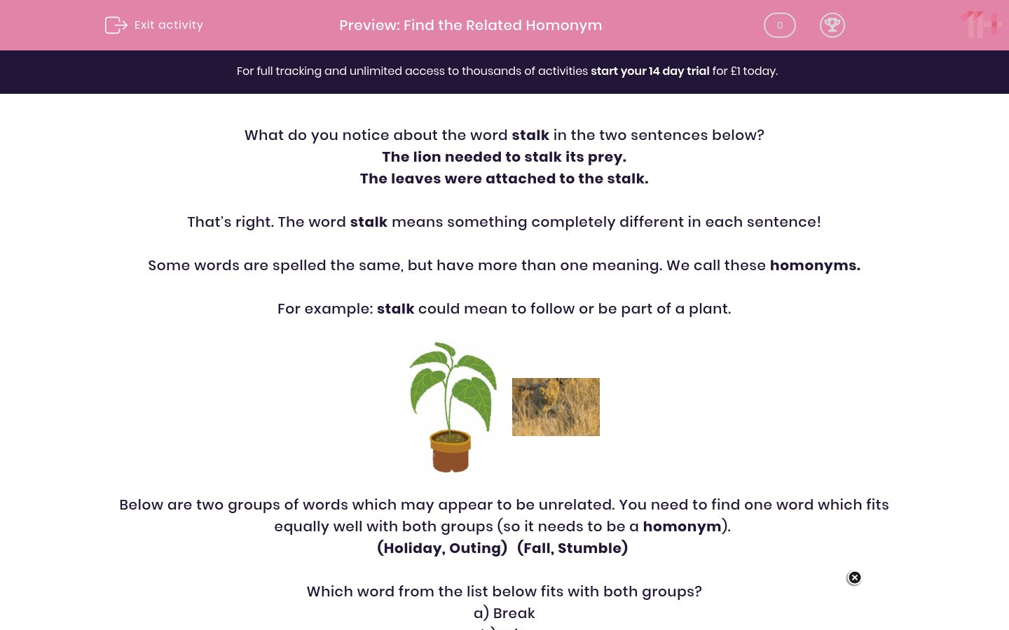 'Find the Related Homonym' worksheet