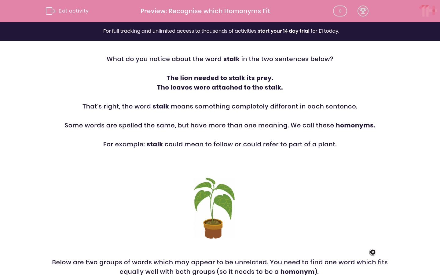 'Recognise which Homonyms Fit' worksheet