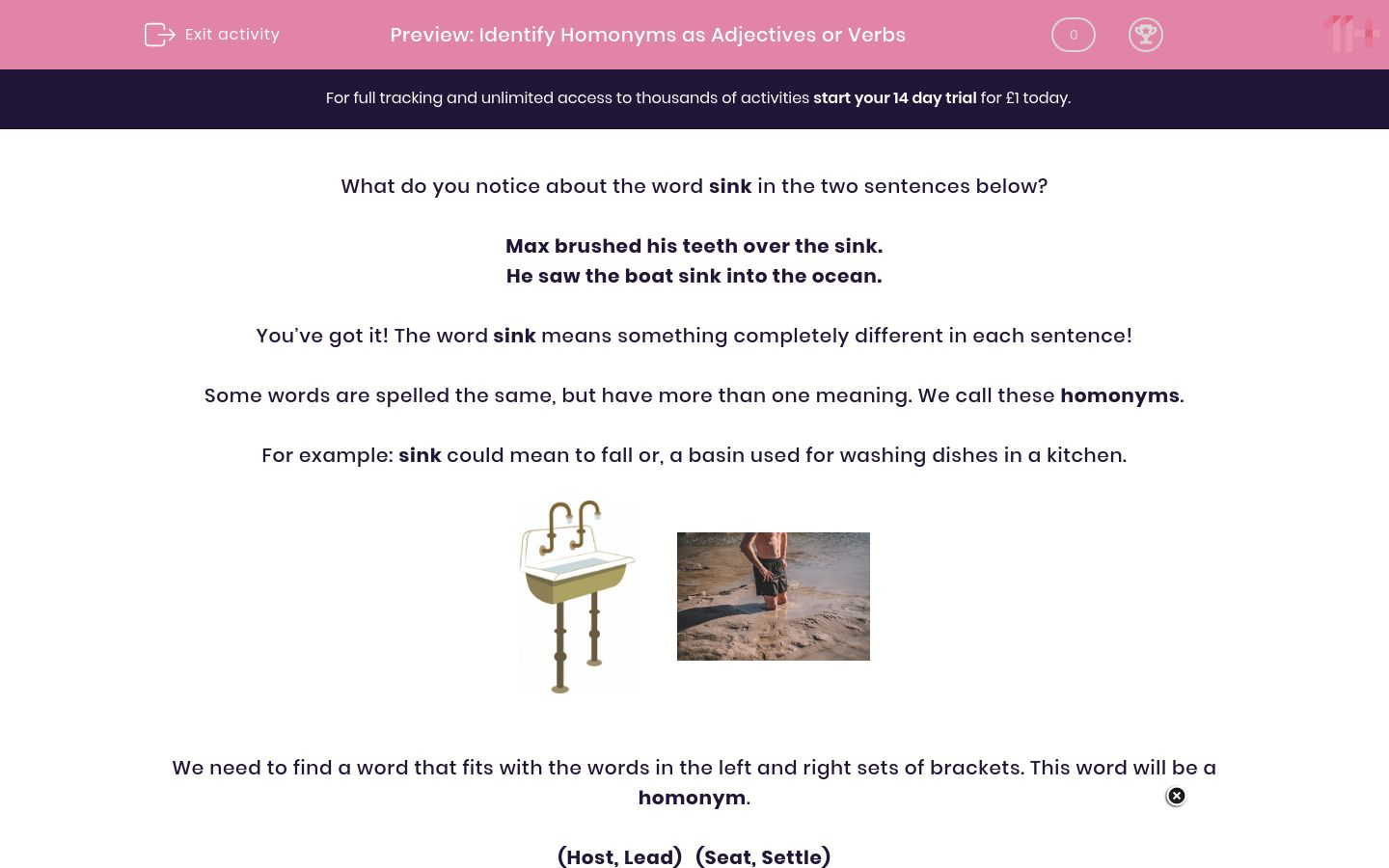 'Identify Homonyms as Adjectives or Verbs' worksheet