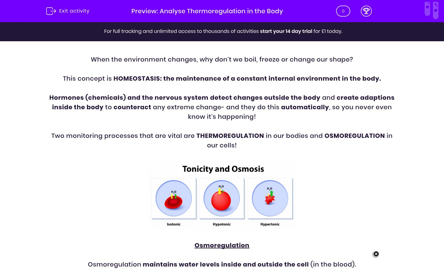 'Analyse Thermoregulation in the Body' worksheet