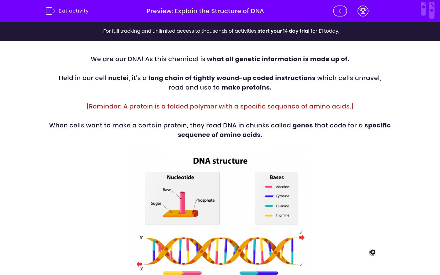 'Explain the Structure of DNA' worksheet
