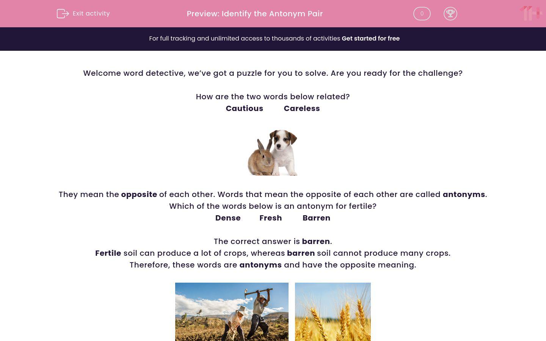 'Identify the Antonym Pair' worksheet