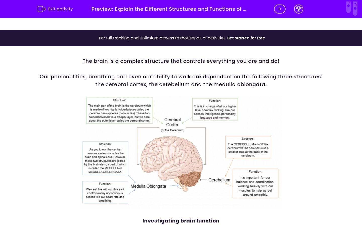 'Explain the Different Structures and Functions of the Brain' worksheet