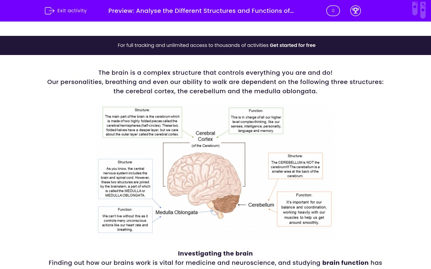 'Analyse the Different Structures and Functions of the Brain' worksheet