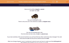 'Transform Sentences: from Singular to Plural' worksheet
