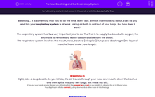 'Breathing and the Respiratory System' worksheet