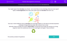 'Microorganisms and Decay' worksheet