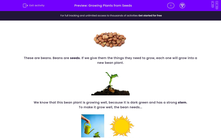 'Growing Plants from Seeds' worksheet