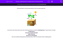 'Understand the Limiting Factors of Photosynthesis' worksheet