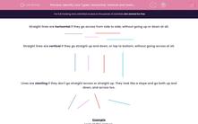 'Identify Line Types: Horizontal, Vertical and Slanting Lines' worksheet
