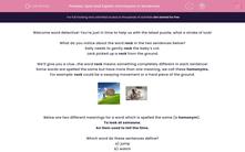 'Spot and Explain Homonyms in Sentences' worksheet