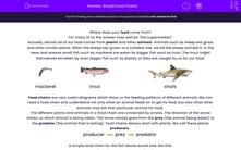 'Simple Food Chains' worksheet