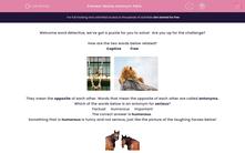 'Revise Antonym Pairs' worksheet