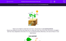 'Know the Structures of the Leaf' worksheet