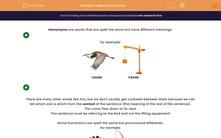 'Explore Homonyms' worksheet