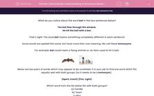 'Demonstrate Understanding of Homonym Meanings' worksheet