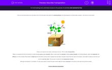 'Describe Transpiration' worksheet