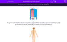 'Explore Synapse Function' worksheet