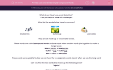 'Join and Divide Simple Compound Words' worksheet