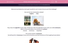 'Match the Antonym Pair' worksheet